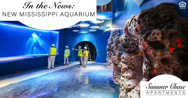 new Mississippi aquarium