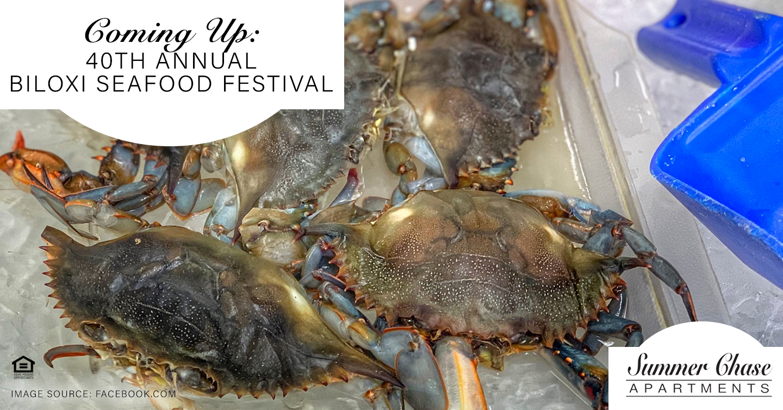 Coming Up: 40th Annual Biloxi Seafood Festival